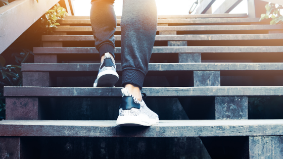 Ordered Steps: Following God Each Step of the Way